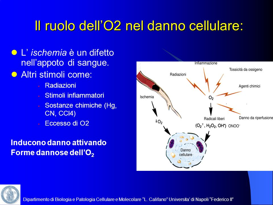 Il ruolo dell'O2 nel danno cellulare: