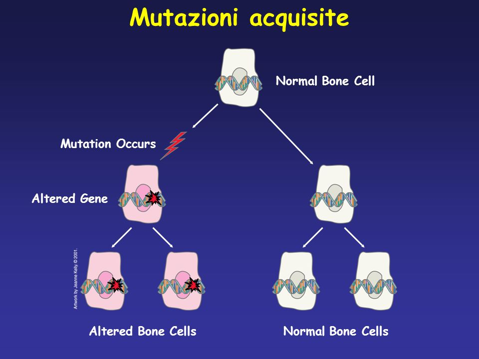 Mutazioni acquisite Normal Bone Cell Mutation Occurs Altered Gene