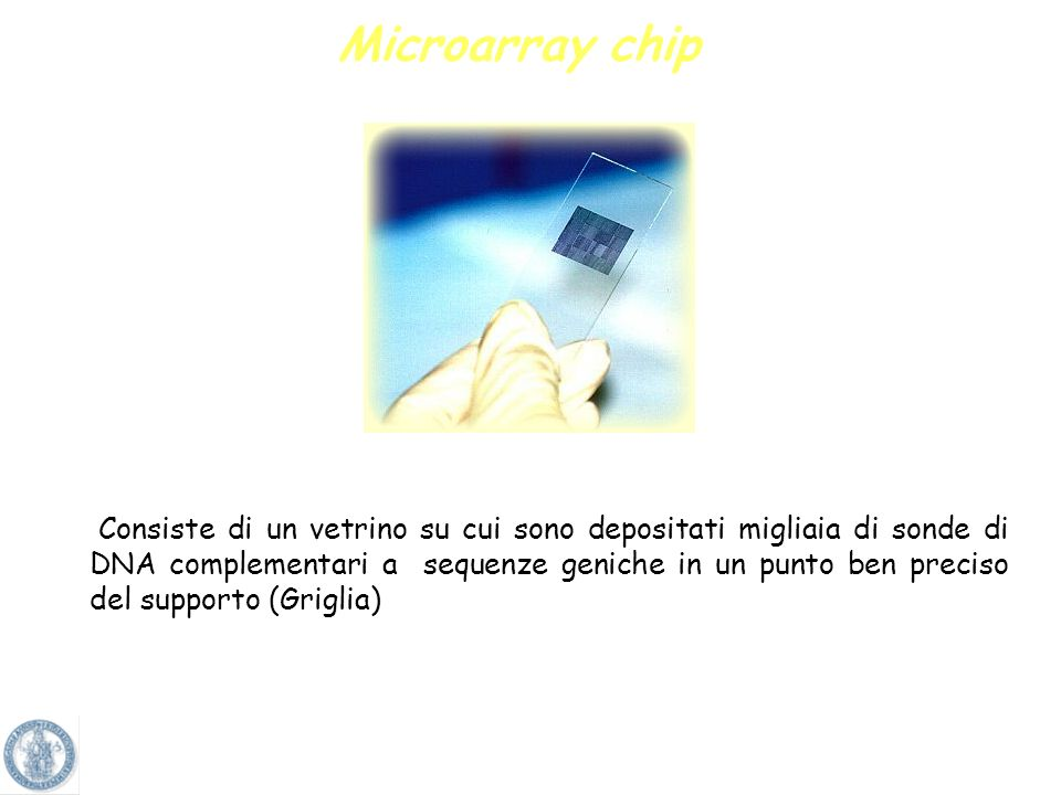 Microarray chip