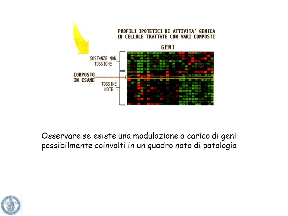 Osservare se esiste una modulazione a carico di geni possibilmente coinvolti in un quadro noto di patologia