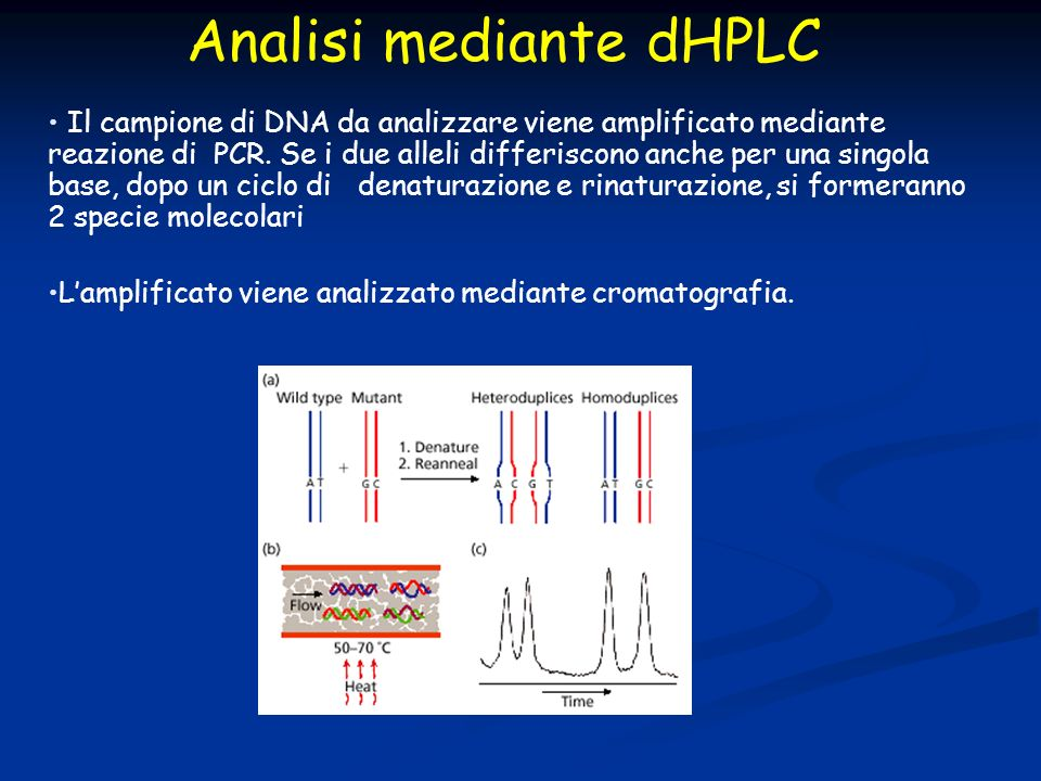 Analisi mediante dHPLC