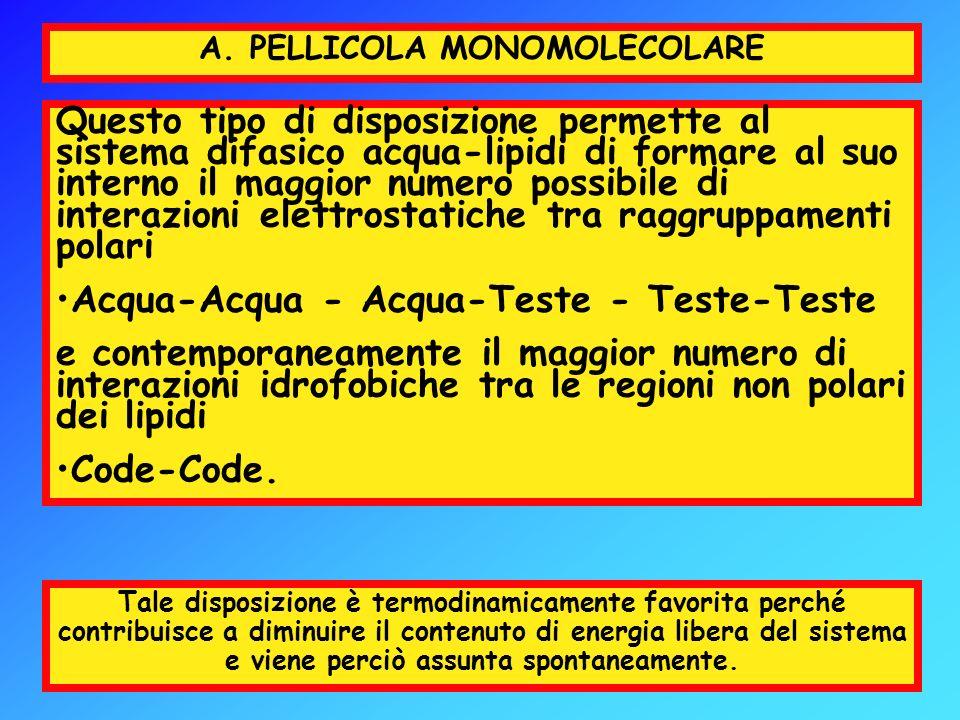 A. PELLICOLA MONOMOLECOLARE