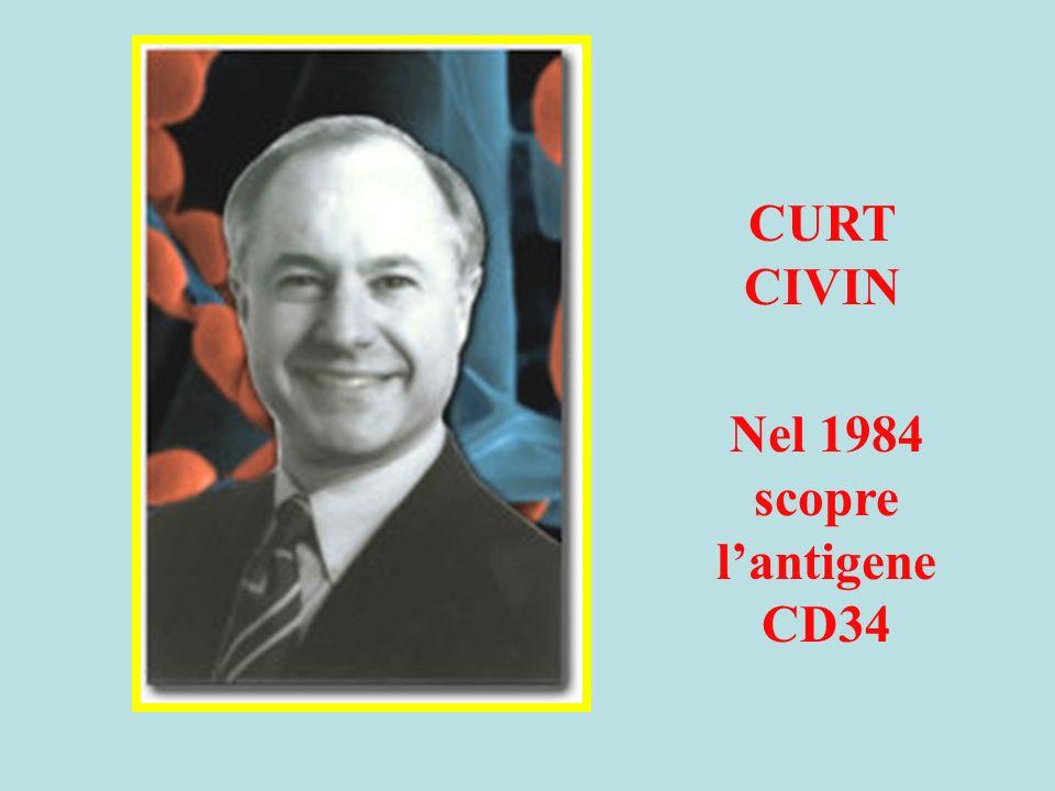 Nel 1984 scopre l'antigene CD34