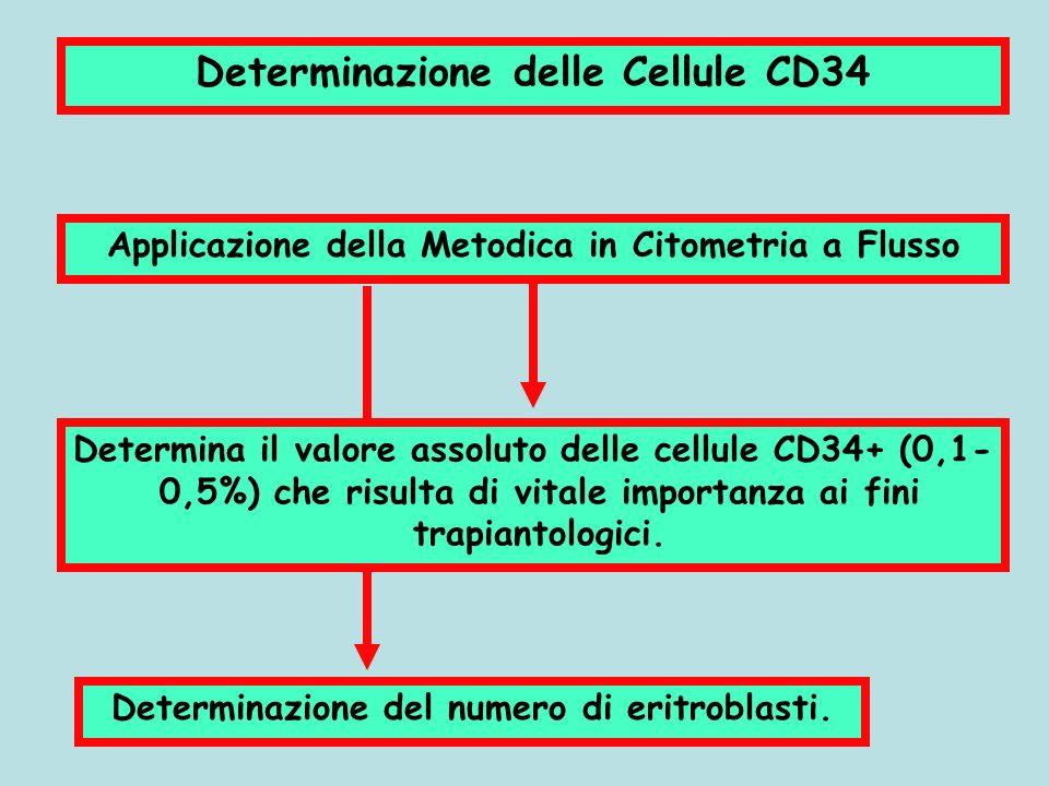 Determinazione delle Cellule CD34