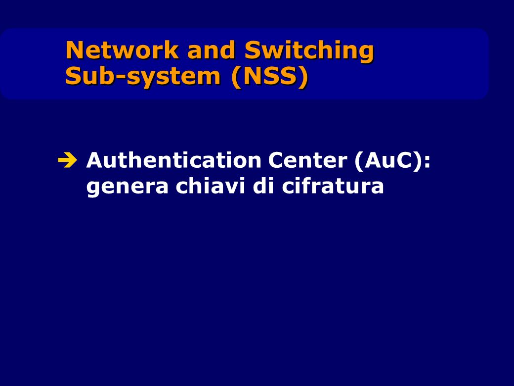 Network and Switching Sub-system (NSS)