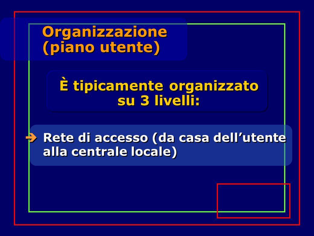 È tipicamente organizzato su 3 livelli: