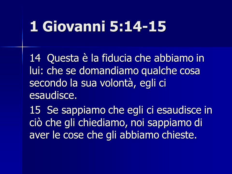 1 Giovanni 5:14-15