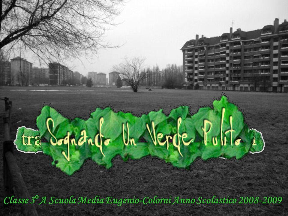Classe 3°A Scuola Media Eugenio-Colorni Anno Scolastico 2008-2009