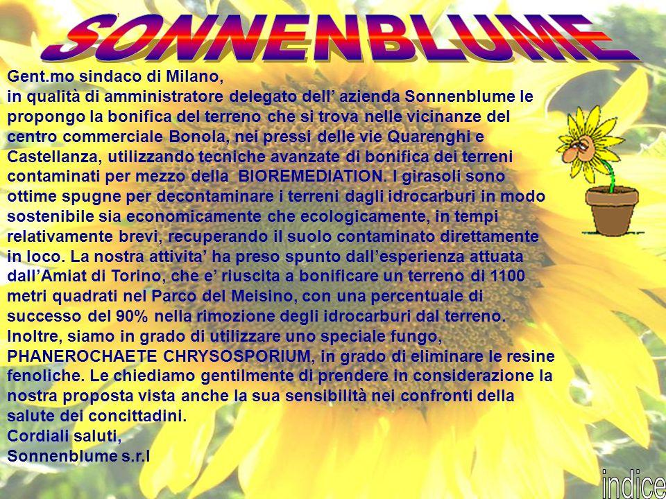SONNENBLUME indice ' Gent.mo sindaco di Milano,