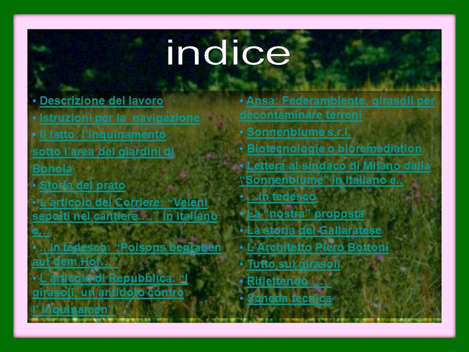 indice Descrizione del lavoro Istruzioni per la navigazione