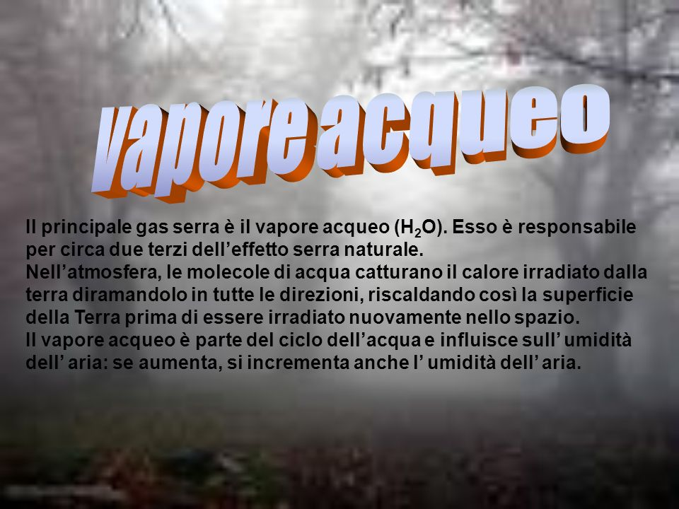 vapore acqueo Il principale gas serra è il vapore acqueo (H2O). Esso è responsabile per circa due terzi dell'effetto serra naturale.