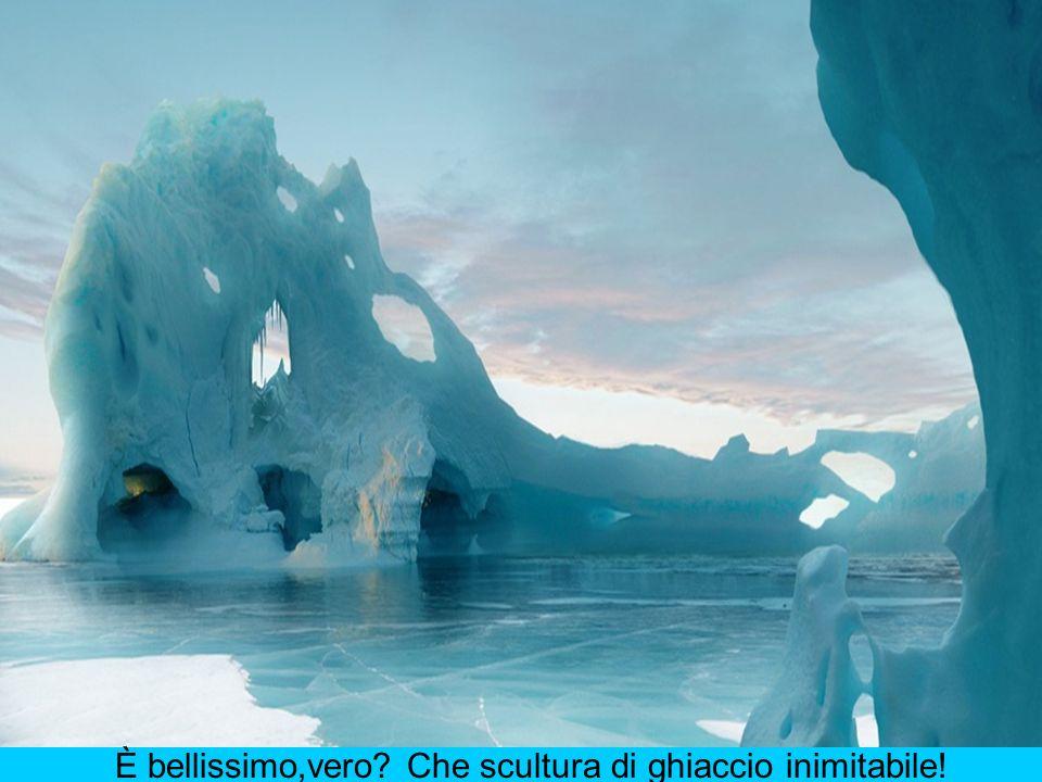 È bellissimo,vero Che scultura di ghiaccio inimitabile!