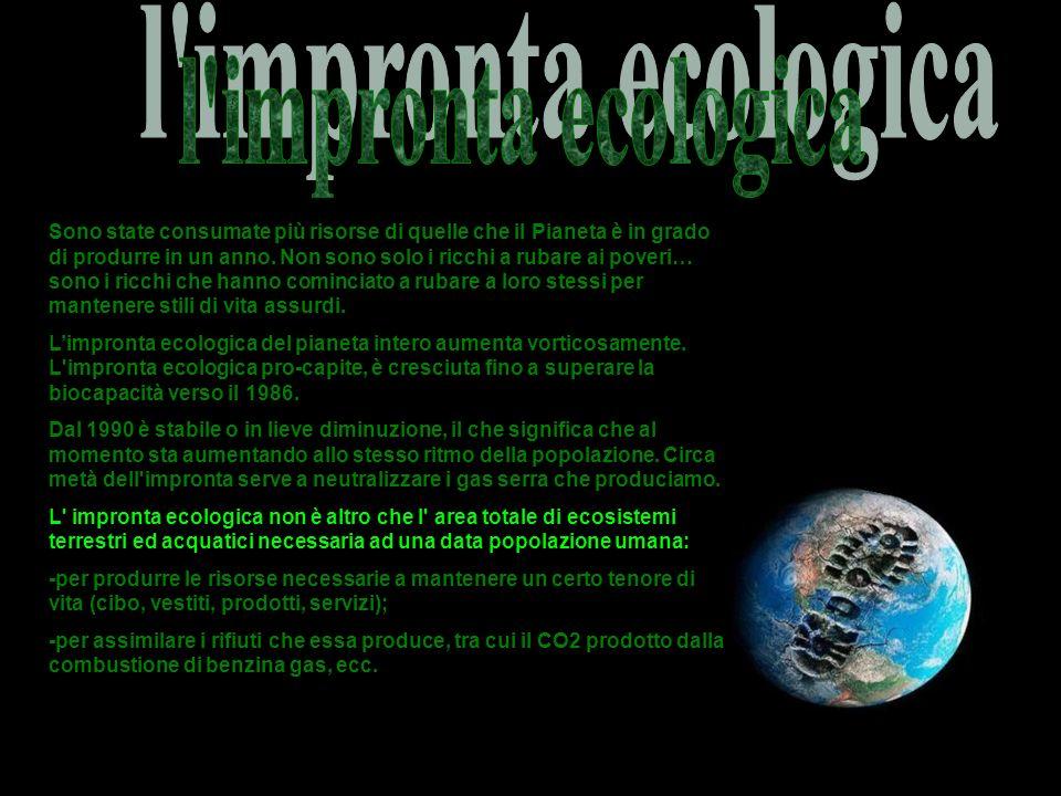 l impronta ecologica