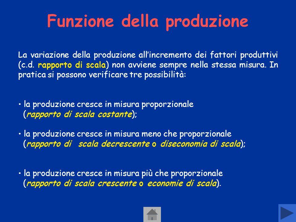 Funzione della produzione