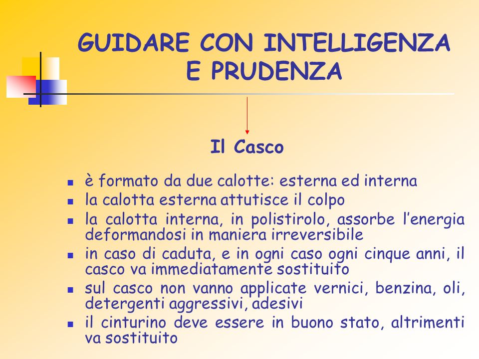 GUIDARE CON INTELLIGENZA E PRUDENZA