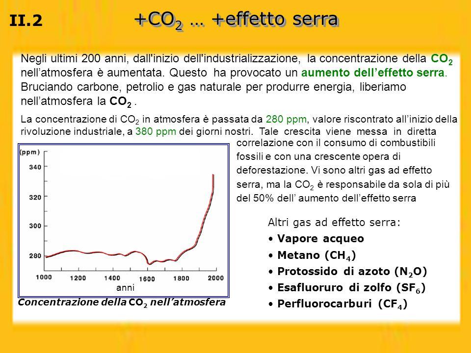 Concentrazione della CO2 nell'atmosfera
