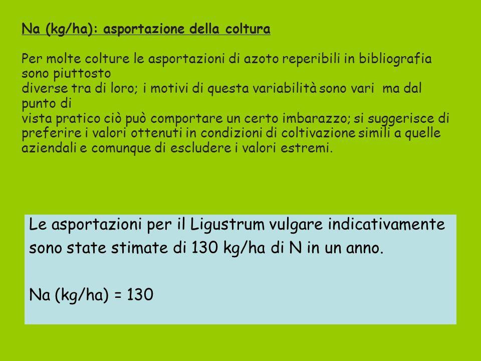 Le asportazioni per il Ligustrum vulgare indicativamente