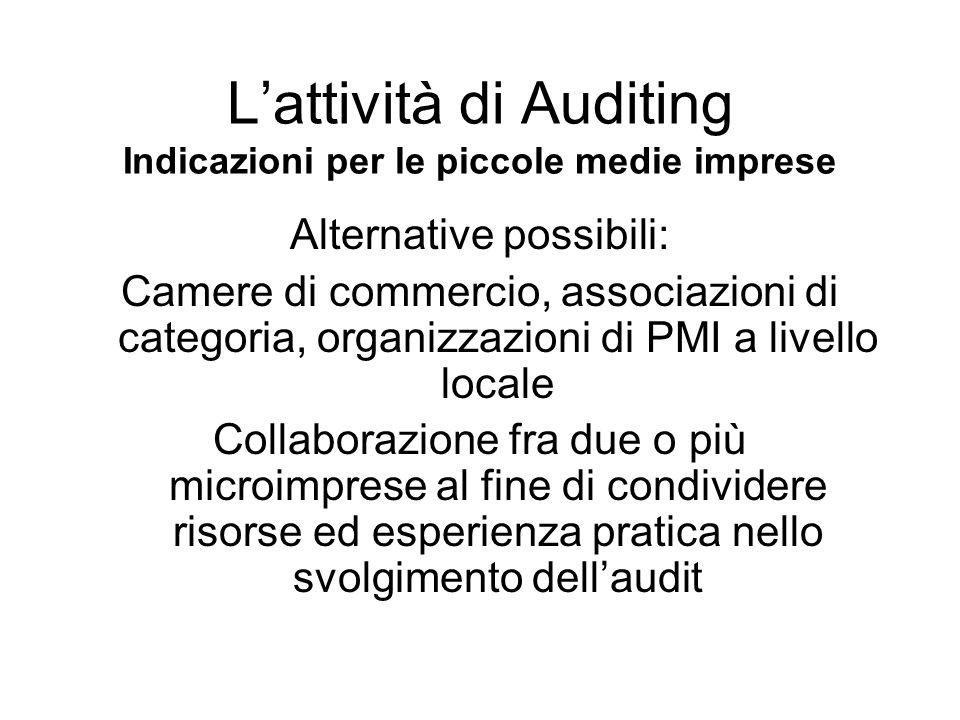 L'attività di Auditing Indicazioni per le piccole medie imprese