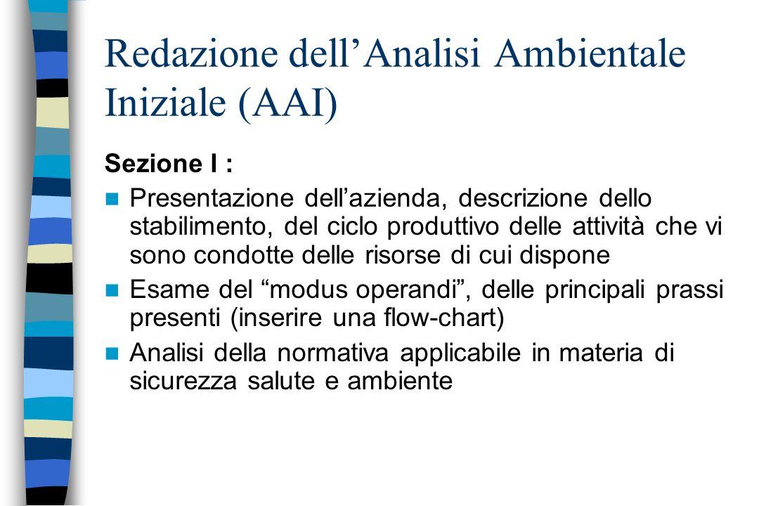 Redazione dell'Analisi Ambientale Iniziale (AAI)