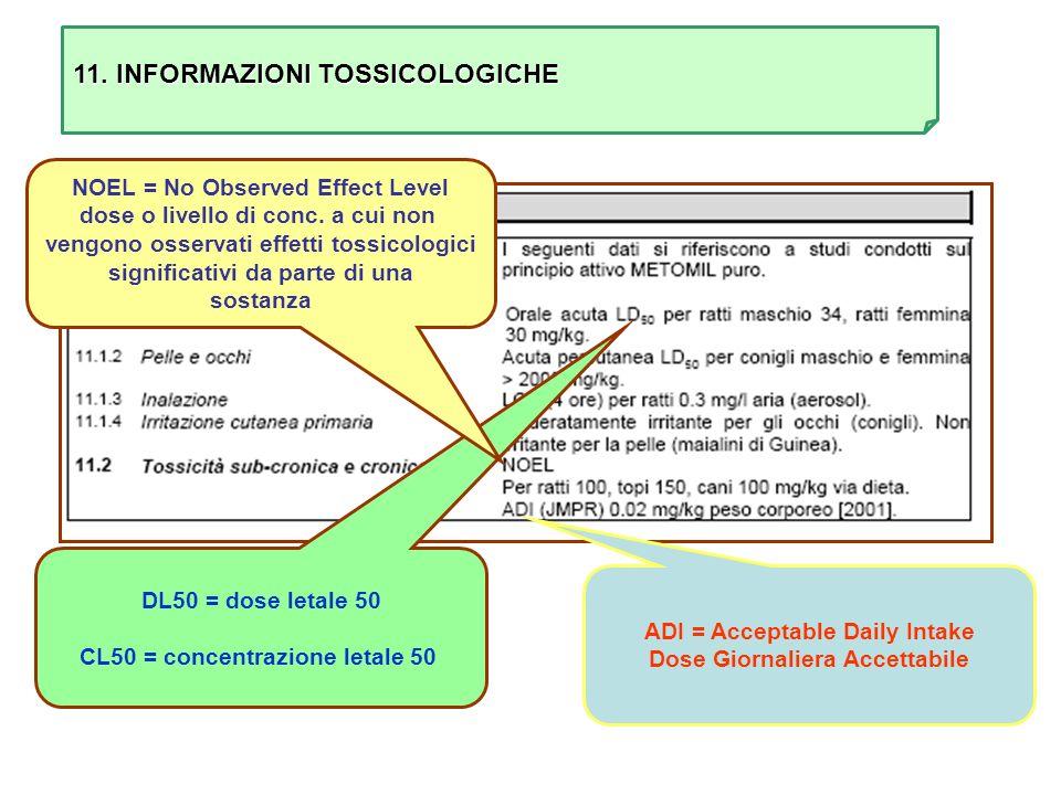 11. INFORMAZIONI TOSSICOLOGICHE