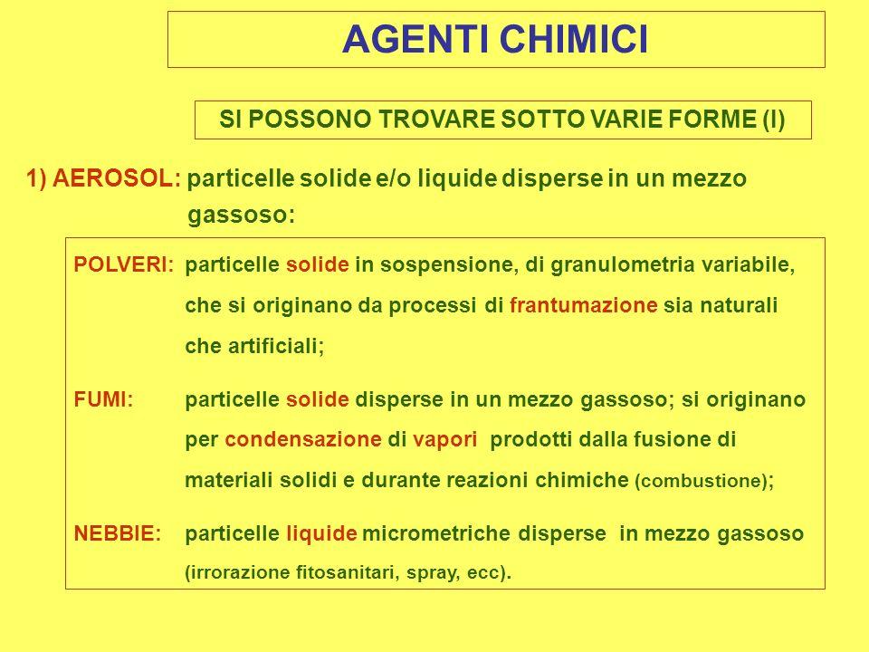 SI POSSONO TROVARE SOTTO VARIE FORME (I)