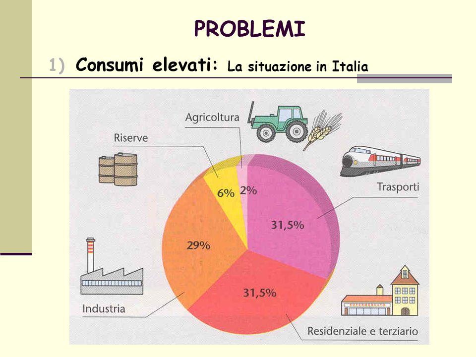 PROBLEMI Consumi elevati: La situazione in Italia