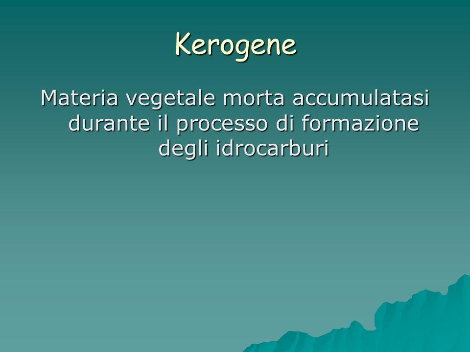 Kerogene Materia vegetale morta accumulatasi durante il processo di formazione degli idrocarburi