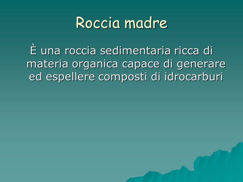 Roccia madre È una roccia sedimentaria ricca di materia organica capace di generare ed espellere composti di idrocarburi.