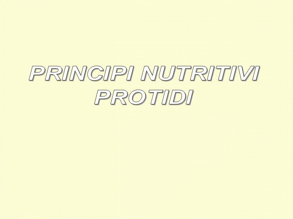 PRINCIPI NUTRITIVI PROTIDI