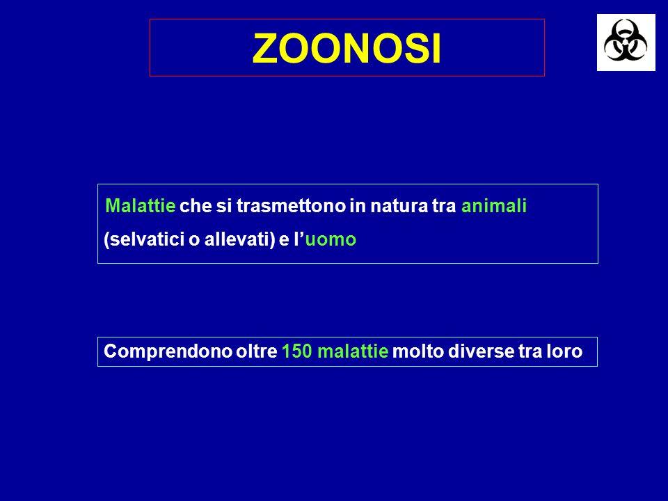 ZOONOSI Malattie che si trasmettono in natura tra animali (selvatici o allevati) e l'uomo.