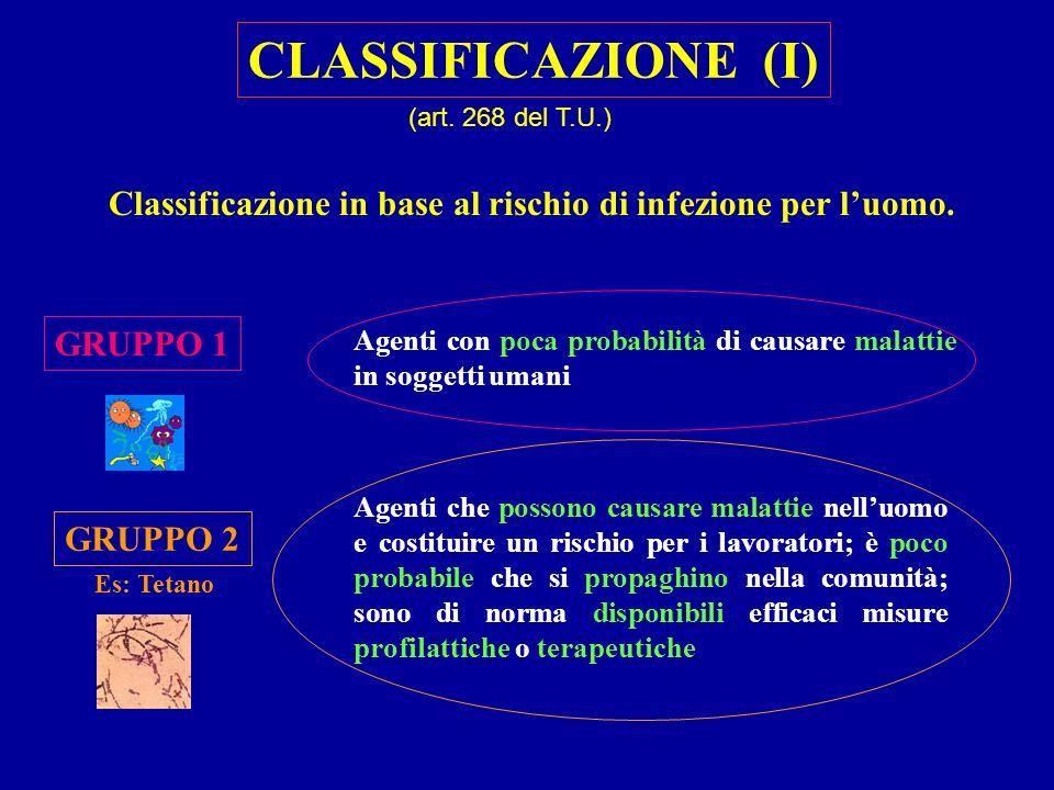 Classificazione in base al rischio di infezione per l'uomo.