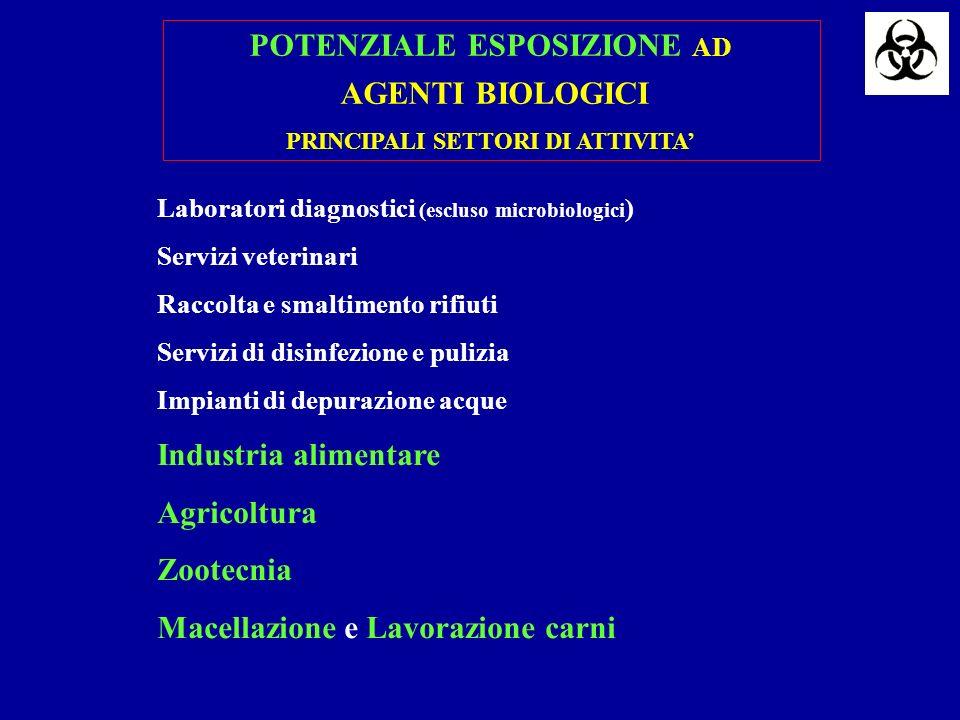 POTENZIALE ESPOSIZIONE AD PRINCIPALI SETTORI DI ATTIVITA'