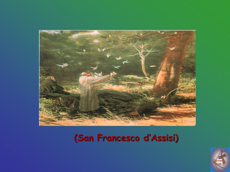 (San Francesco d'Assisi)