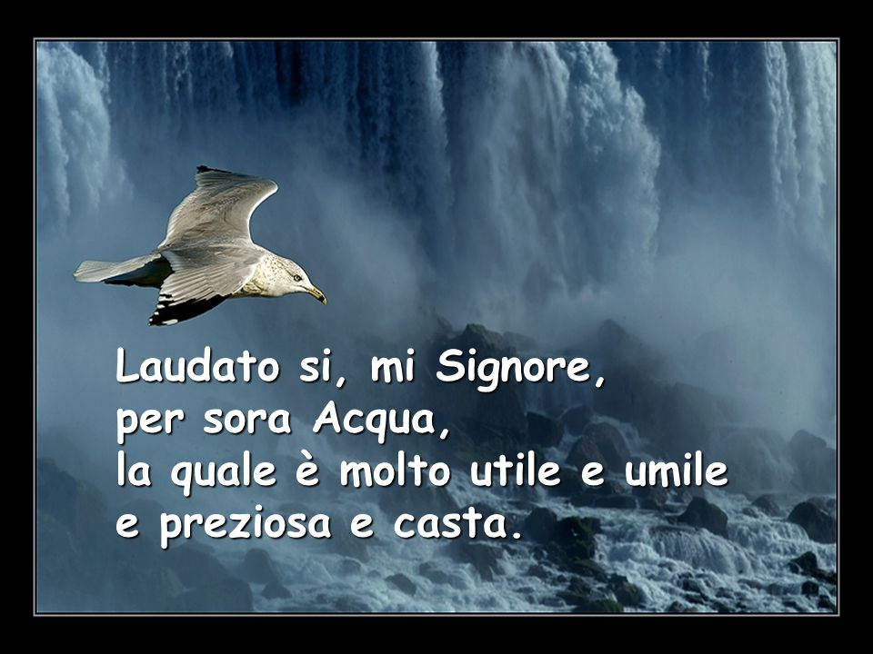 Laudato si, mi Signore, per sora Acqua, la quale è molto utile e umile e preziosa e casta.