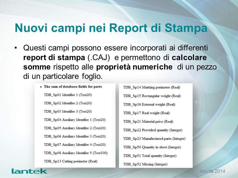 Nuovi campi nei Report di Stampa