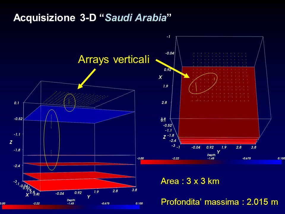 Arrays verticali Acquisizione 3-D Saudi Arabia Area : 3 x 3 km