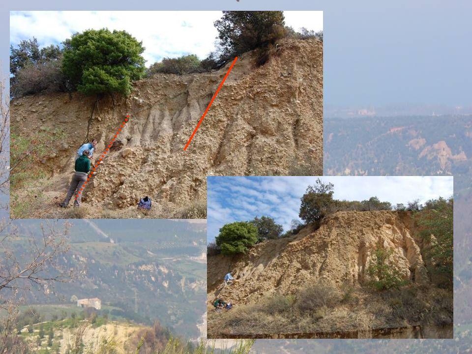 Patire faglie circa est ovest normali sia sin che post sedimentari