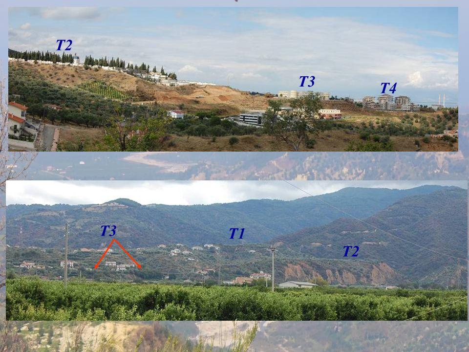 T2 T3 T4 T3 Incastro morfologico non per faglia T1 T2