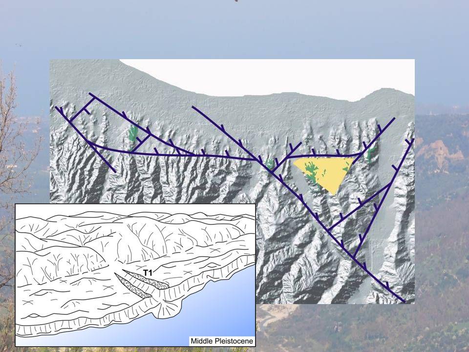 Fase tettonica che differenzia i due serttori e e w con diversi tipi di sedimentazione