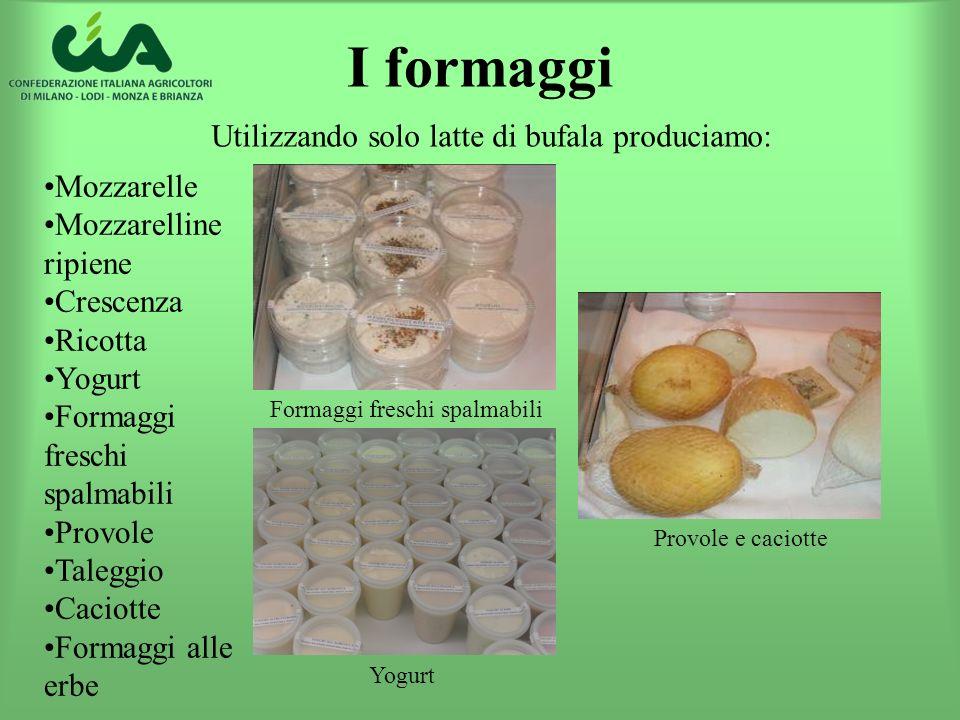 Utilizzando solo latte di bufala produciamo: