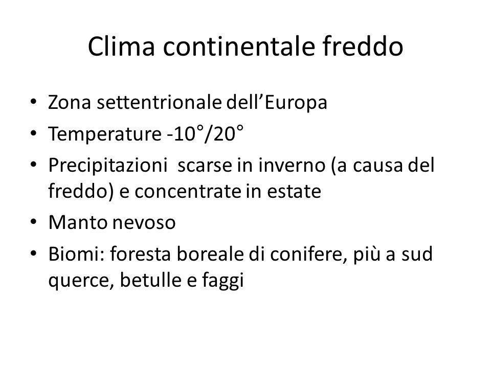 Clima continentale freddo