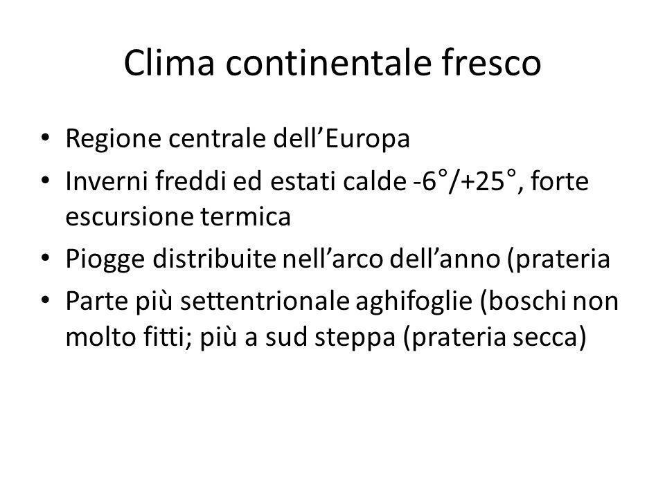 Clima continentale fresco