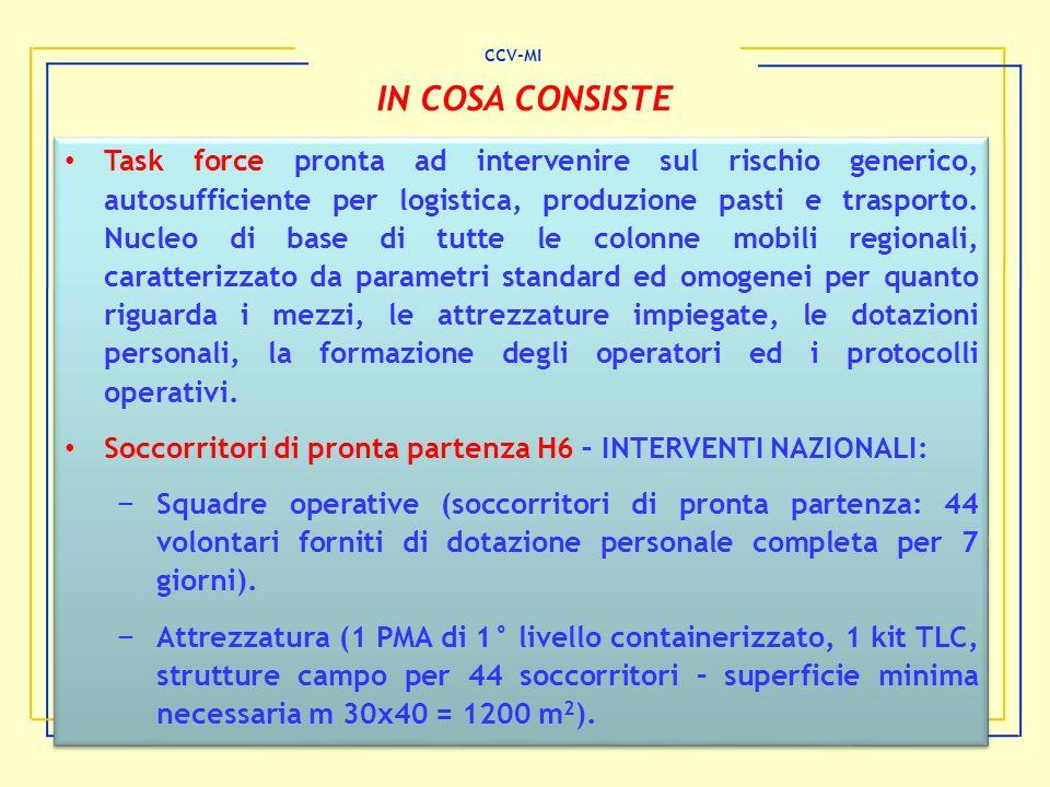 CCV-MI IN COSA CONSISTE.