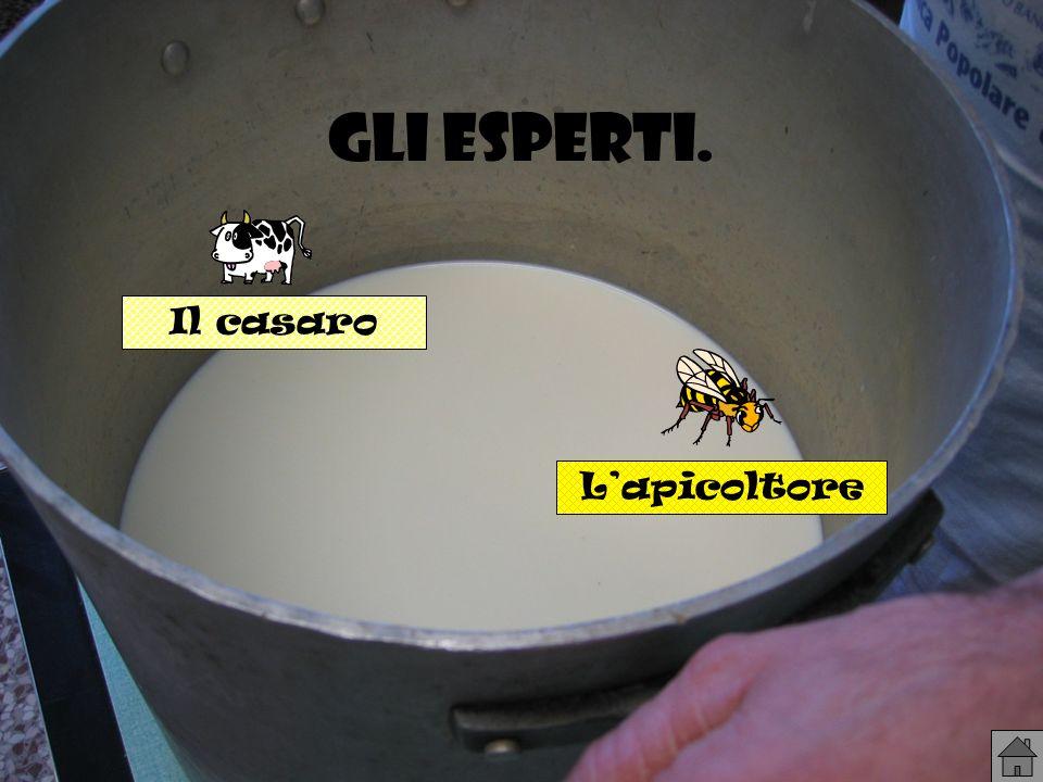 Gli esperti. Il casaro L'apicoltore