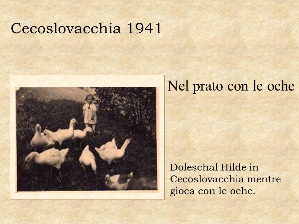 Cecoslovacchia 1941 Nel prato con le oche