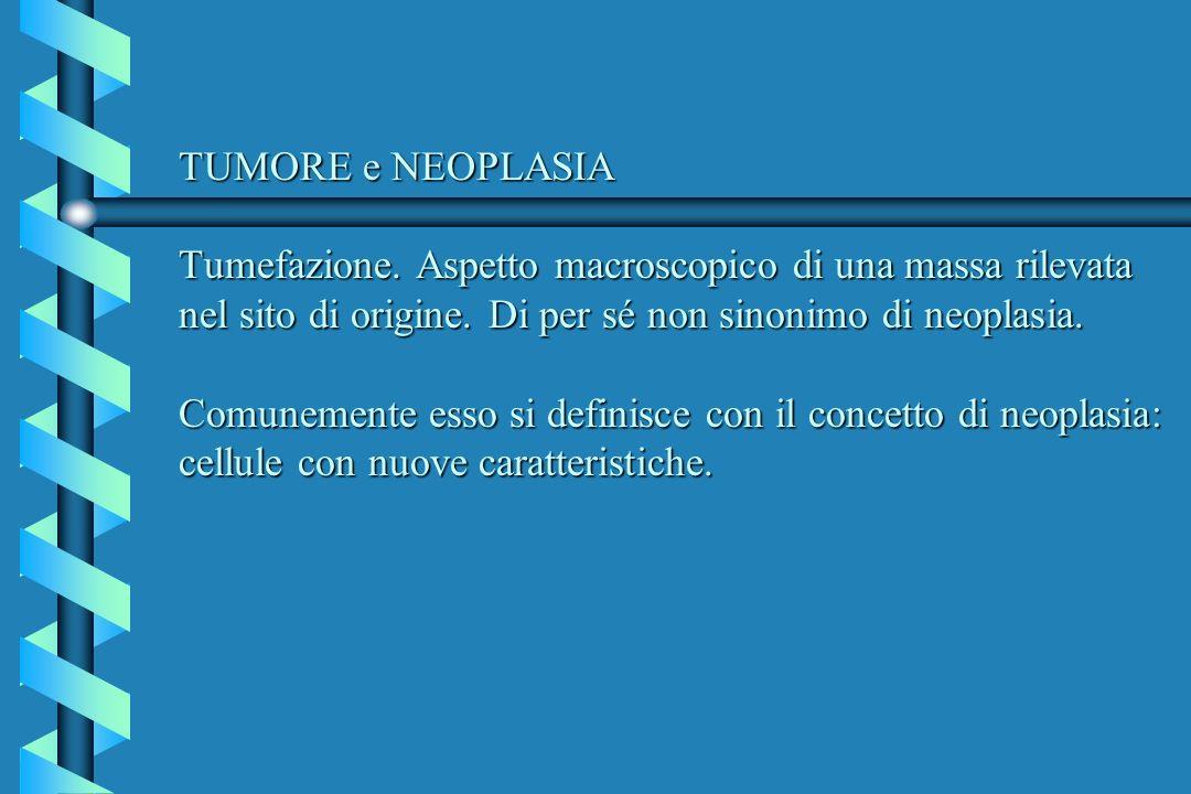 TUMORE e NEOPLASIA Tumefazione
