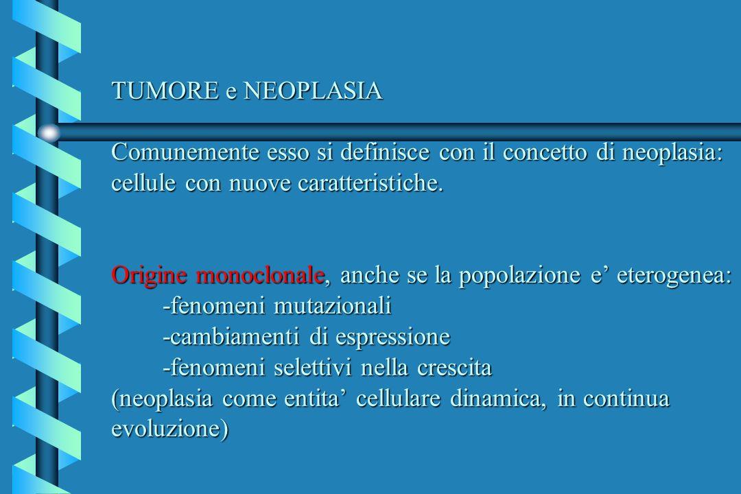 TUMORE e NEOPLASIA Comunemente esso si definisce con il concetto di neoplasia: cellule con nuove caratteristiche.