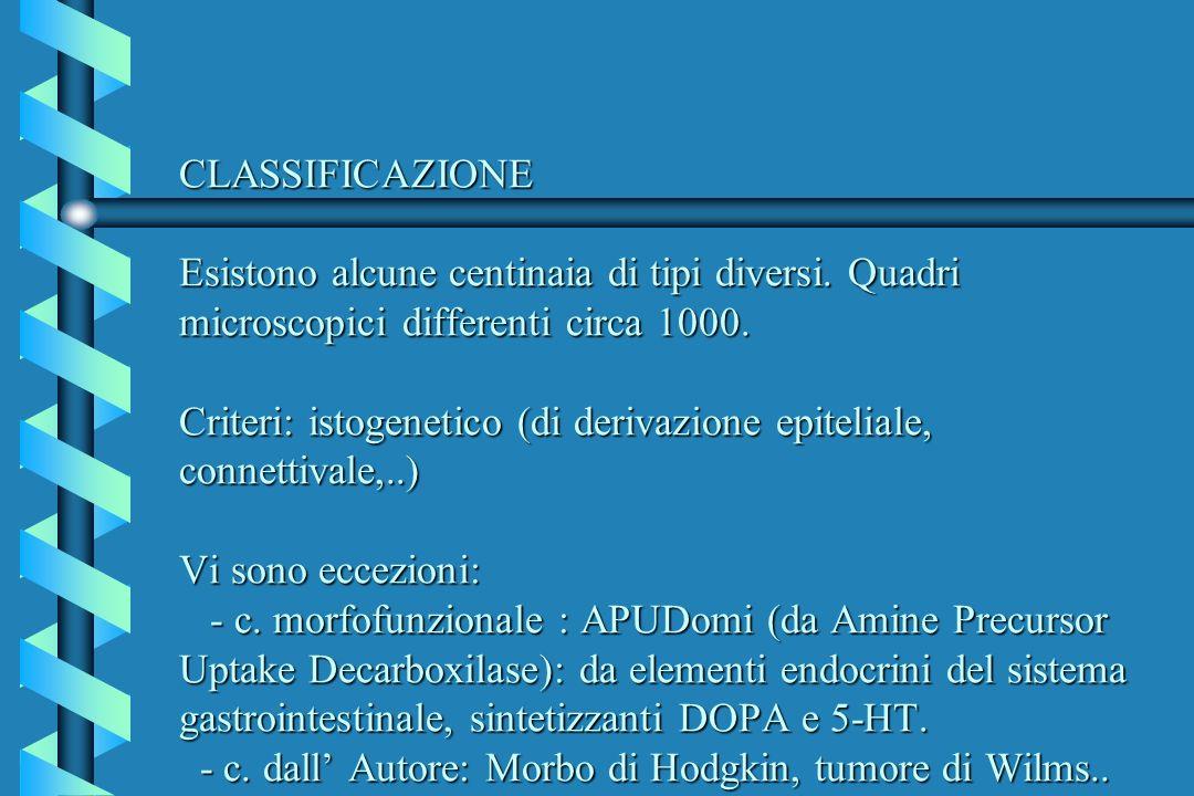 CLASSIFICAZIONE Esistono alcune centinaia di tipi diversi