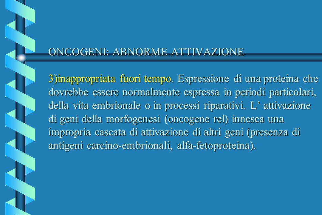 ONCOGENI: ABNORME ATTIVAZIONE 3)inappropriata fuori tempo