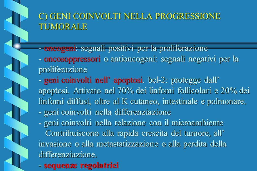 C) GENI COINVOLTI NELLA PROGRESSIONE TUMORALE - oncogeni: segnali positivi per la proliferazione - oncosoppressori o antioncogeni: segnali negativi per la proliferazione - geni coinvolti nell' apoptosi.